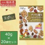 (代引き・同梱不可)(送料無料)福楽得 美実PLUS ナッツと果実 ハニージンジャー 40g×20袋セット
