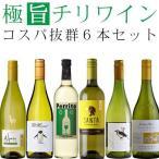 ワインセット 白 チリワイン(シャルドネ主体)飲み比べ 6本セット wine set