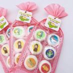【オリジナル】チョコマシュマロ   伊豆シャボテン動物公園 動物のイラストをプリント ふんわりマシュマロの中にチョコレート 6個入り