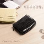 クロコダイル 折り財布 マット 加工 / レディース / コンパクト 財布 二つ折り