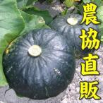 かぼちゃ (6〜8玉入) 10kg いわみざわ産直送 送料無料