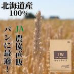【絶品】強力粉 北海道 いわみざわ産小麦100% キタノカオリ 5kg