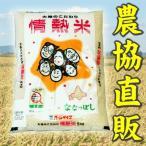 北海道米 情熱米ななつぼし 10kg 平成28年産 新米 良質1等米 産地直送