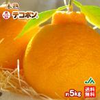 みかん 木熟 デコポン 約5kg 18〜20玉入り 1箱 秀品 送料無料 人気 おすすめ 糖度13度以上、光センサー選別 不知火 しらぬひ