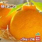 みかん 木熟 デコポン 約5kg 18〜20玉入り 2箱 秀品 送料無料 人気 おすすめ 糖度13度以上、光センサー選別 不知火 しらぬひ