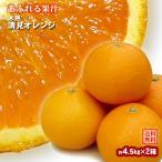 みかん 木熟清見オレンジ 約4.5kg(18玉入り) 2箱 送料無料〜果汁たっぷり人気の柑橘