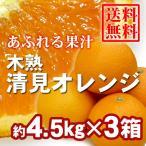 みかん 木熟清見オレンジ 約4.5kg(18玉入り) 3箱 送料無料〜果汁たっぷり人気の柑橘