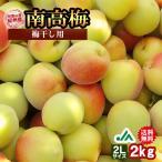 (送料無料)梅干し用 紀州産南高梅(2Lサイズ) 2kg 〜和歌山県の農協JA紀南より安全安心な青梅をお届けします (インターネット限定)