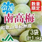 氷梅 冷凍南高梅(梅酒用・梅ジュース用) 500g×3袋(計1.5kg) 〜冷凍梅 和歌山県紀州産青梅