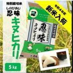 滋賀県産近江米 JAこうか 特別栽培米 忍味 キヌヒカリ5kg お米 白米