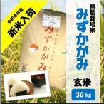 滋賀県産近江米 JAこうか 特別栽培米 みずかがみ 玄米 30kg