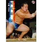 BBM 大相撲カード 2008 レギュラー 60 猛虎浪 栄
