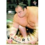 BBM 大相撲カード 2010 レギュラー 17 武州山 隆士