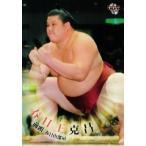 BBM 大相撲カード 2010 レギュラー 38 春日王 克昌