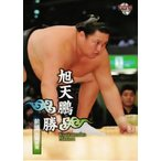 BBM 大相撲カード 2012 レギュラー 13 旭天鵬 勝