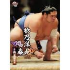 BBM 大相撲カード 2012 レギュラー 59 栃乃洋 泰一