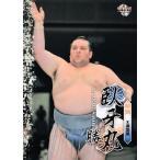 BBM 大相撲カード 2013 レギュラー 24 臥牙丸 勝