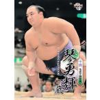 BBM 大相撲カード 2013 レギュラー 47 琴勇輝 一巖