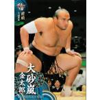BBM 大相撲カード 2014 レギュラー 40 大砂嵐 金太郎