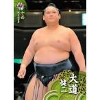 BBM 大相撲カード 2014 レギュラー 61 大道 健二