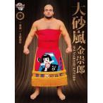 BBM2015 大相撲カード「粋」 レギュラー 31 大砂嵐 金崇郎