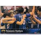 V・プレミアリーグ男子公式トレーディングカード2015【BOX特典カード】 パナソニック・パンサーズ