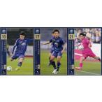 【FC町田ゼルビア】2016 Jリーグオフィシャルカード [レギュラー/チームコンプリートセット] 全3種
