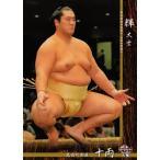BBM 大相撲カード 2016 レギュラー 45 輝 大士