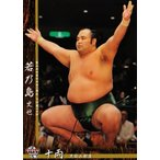 BBM 大相撲カード 2016 レギュラー 57 若乃島 史也