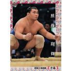 58 【照強 翔輝】BBM2018 大相撲カード レギュラー