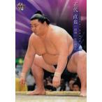 17 【正代 直也】BBM2019 大相撲カード レギュラー
