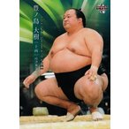 67 【豊ノ島 大樹】BBM2019 大相撲カード レギュラー