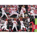 【広島東洋カープ】カルビー 2021プロ野球チップス第3弾 [チーム別レギュラーコンプリートセット] 全8種
