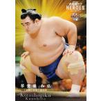 17 【琴奨菊 和弘】BBM 2021 大相撲カード レジェンド -ヒーローズ- レギュラー