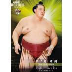 30 【琴ノ若 晴將】BBM 2021 大相撲カード レジェンド -ヒーローズ- レギュラー