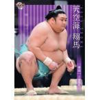 41 【天空海 翔馬】BBM2021 大相撲カード レギュラー