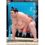 63 【水戸龍 聖之】BBM2021 大相撲カード レギュラー