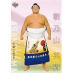 4 【朝乃山 英樹】 BBM2021 大相撲カード「匠」レギュラー