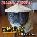 菅笠  ミニサイズ 約15cm 職人手作り限定品  質の良い福井県産天然すげ使用、伝統工芸品 おしゃれ すげがさ