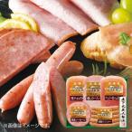 お中元 御中元 2021 ハム ソーセージ ギフト 詰め合わせ お取り寄せグルメ 肉 肉加工品 北海道トンデンファームギフト TF-3B お返し 食品