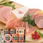 お中元 御中元 2021 ハム ソーセージ ギフト 詰め合わせ お取り寄せグルメ 肉 肉加工品 日本ハム 本格派ギフトセット AP-500(T) 食品