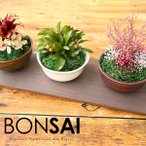 japangift_bonsai-3set