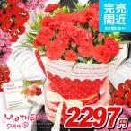 母の日ギフト カーネーション 2018 4号鉢 花 鉢植え 早割り 鉢花 花鉢 母の日 ギフト プレゼント 送料無料
