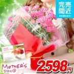 母の日ギフト カーネーション 2018 5号鉢 花 鉢植え 母の日 ギフト 早割り 鉢花 花鉢 フラワー プレゼント 送料無料