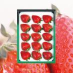 お歳暮 御歳暮 フルーツ 果物 詰め合わせ ギフト 詰合せ いちご 苺 イチゴ ダイワ果園 福岡博多あまおう お返し 挨拶 お礼 ランキング 食品