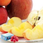 お歳暮 御歳暮 フルーツ 果物 詰め合わせ ギフト 詰合せ りんご りんご箱 青森県産 みつまるくん サンふじ お返し 挨拶 お礼 ランキング 食品