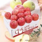お歳暮 御歳暮 フルーツ 果物 詰め合わせ ギフト 詰合せ りんご りんご箱 ダイワ果園 長野産 サンふじりんご お返し 挨拶 お礼 ランキング 食品