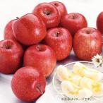 お歳暮 御歳暮 フルーツ 果物 詰め合わせ ギフト 詰合せ りんご 青森 サンふじりんご お返し 挨拶 お礼 会社 ランキング 人気 おすすめ 食品
