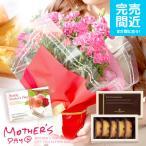 母の日ギフト スイーツ カーネーション5号鉢とアンリシャルパンティエ スイーツセット 母の日 ギフト 花 鉢植え 早割り 鉢花 花鉢 プレゼント 送料無料