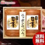 お歳暮 御歳暮 早割 ギフト ハム 詰め合わせ 日本ハム 国産特撰 日本 JPN-100 ニッポンハム 食品 食べ物